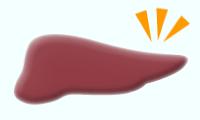 肝臓の弱りを改善させる